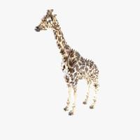 voxel giraffe 3d max