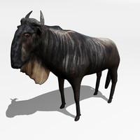 3d model antelope gnu