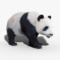 panda bear fur rigged obj