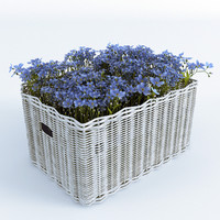 3d flowers forget-me-not basket