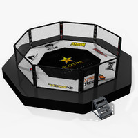 fighting octagon arena 3d max