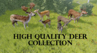 package deer 3d model