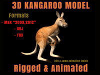 3d model kangaroo animation