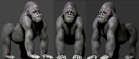 3d gorilla animation