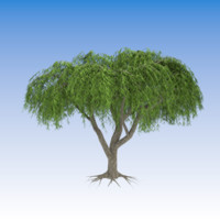 3d decorative weeping willow