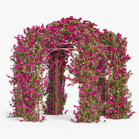 Pergola Bougainvillea With Flowers Ivy Hexagonal