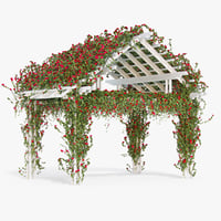 Pergola Climbing Roses With Flowers Ivy Wooden