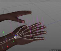 3d model of fully rigged hands