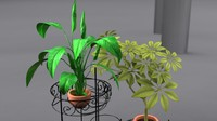 house plants 3d obj