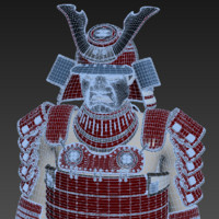 Samurai armor  (black friday -50%)
