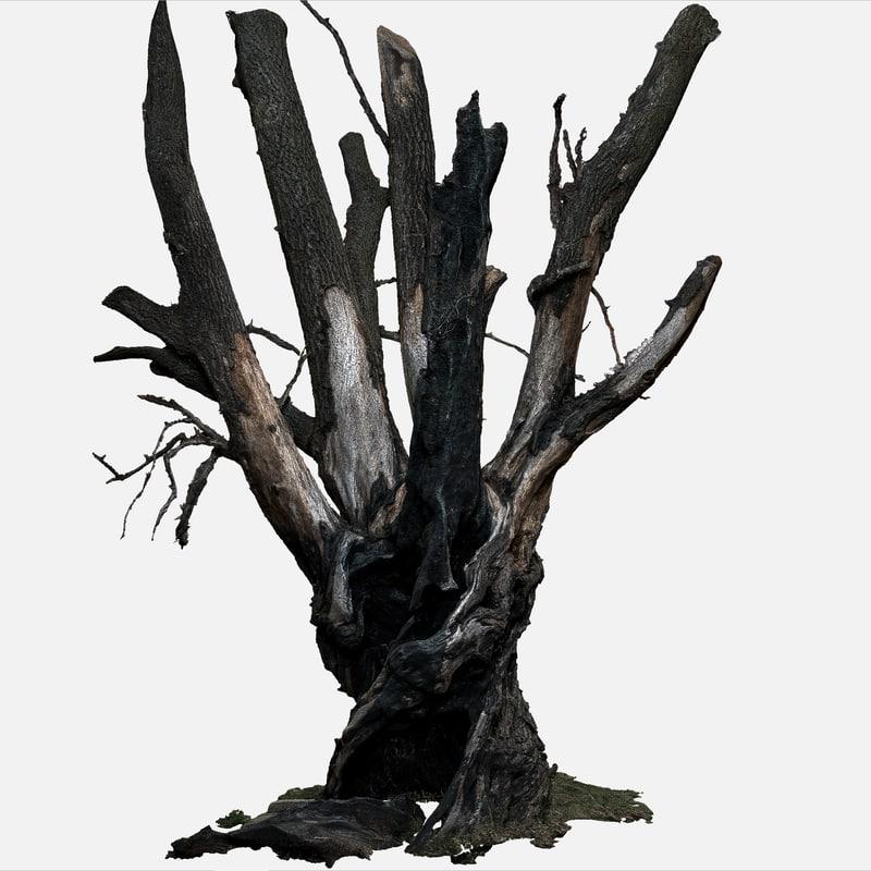 Tree_03g_01_26k_shot_58.png