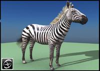3d model of zebra