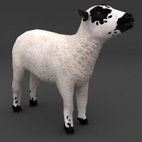 3d model lamb