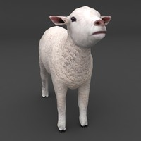 lamb white face lowpoly