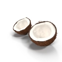 3d model of sliced coconut