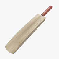 3d cricket bat