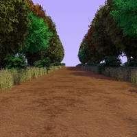 country forest path 3d model