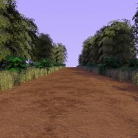 country forest path 2 c4d