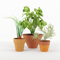 3d max kitchen plants