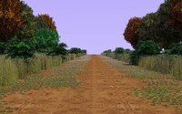 country forest path 3ds