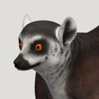 3d lemur model