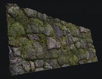 rock moss wall