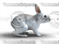 rabbit animation 3d fbx