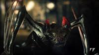 vampire bat creature 3d model