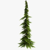 3d model spruce2 visualization