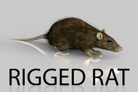 rigged rat obj