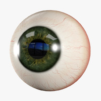 3d model eyeball eye