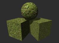 Grass 8
