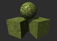 Grass 9