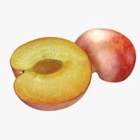 3d plum cross section 3
