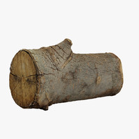 3d realistic wood log model