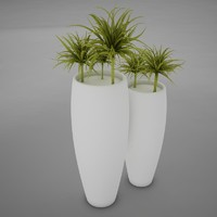 plant living 2