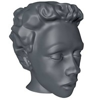 female head 3d 3ds