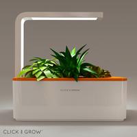 click grow max
