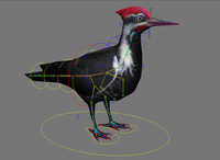 woodpecker black rig 3d model