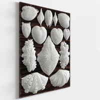 «Forms in Nature Wall Decor»