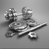 chromium-plated dumbbell 3d model