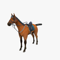 horse racehorse 3d max