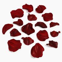 model of rose petals