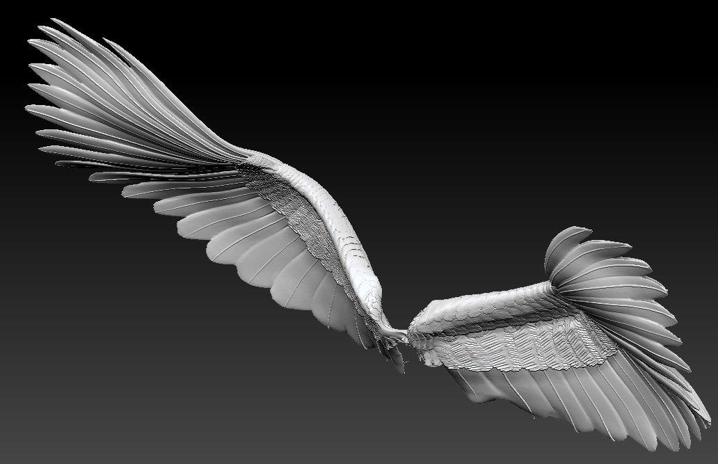 wings301.jpg