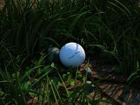 3d grass stones ball