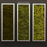 Moss pictures