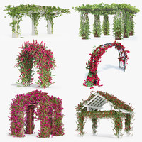 Set Bougainvillea Climbing Roses Of 6 Pergolas With Flowers Ivy