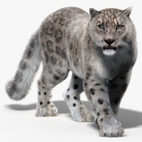 snow leopard fur cat 3d 3ds