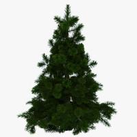 3d tree fir-tree fir