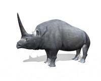 elasmotherium primitive rhino 3d model